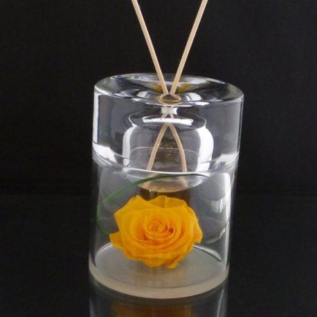 rea rose jaune
