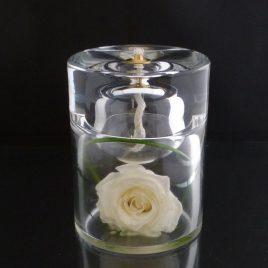 rea rose blanche
