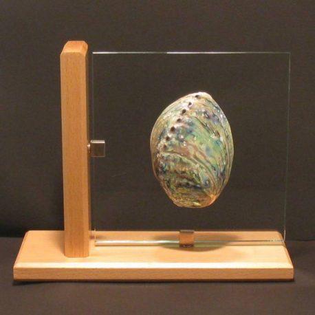 abalone pawa bleue